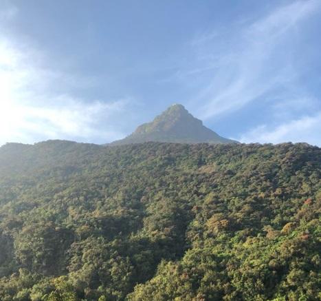 Jejak Kaki Nabi Adam Berukuran Raksasa di Sri Lanka