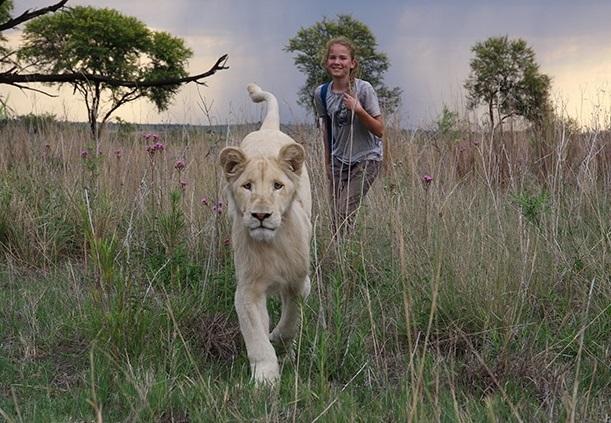 Resensi 'Mia and the White Lion': Singa Juga Punya Cinta