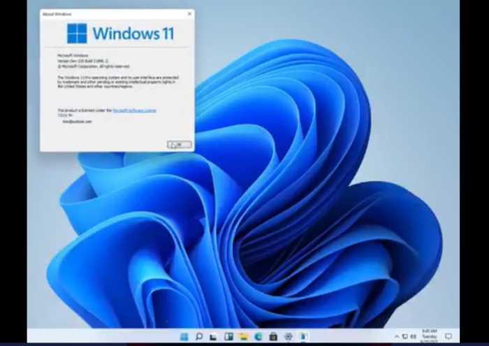 Viral Windows 11 Bocor di Internet, Netizen Bilang Begini