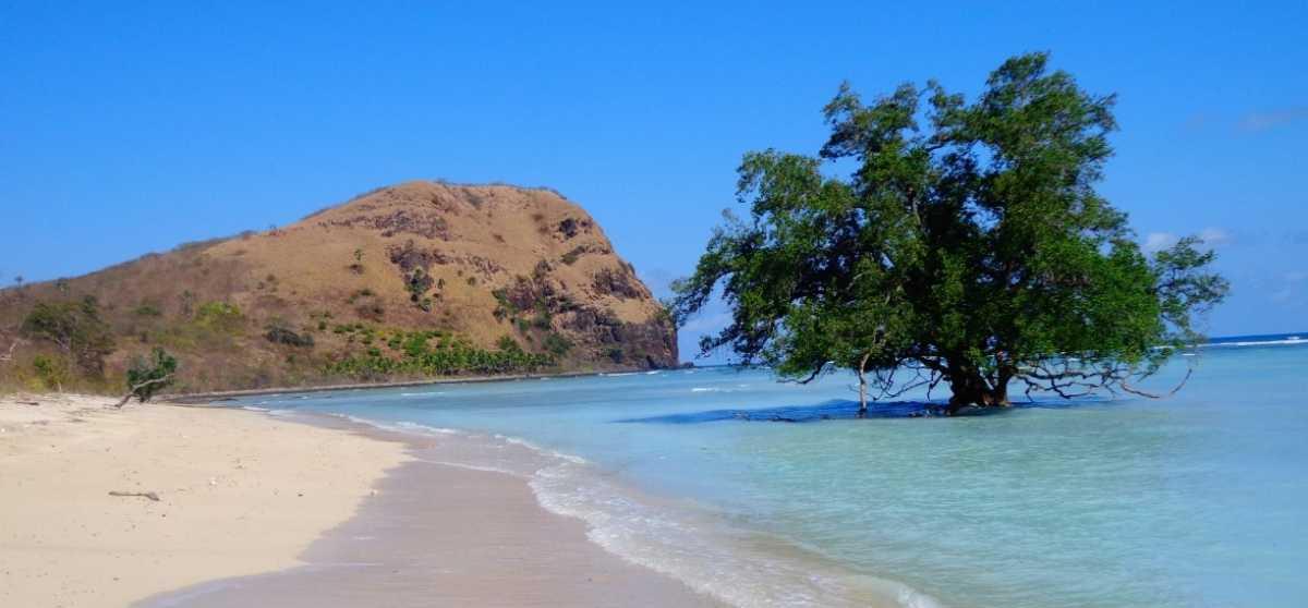 Oa dan Rako, Dua Pantai Cantik di Flores Timur