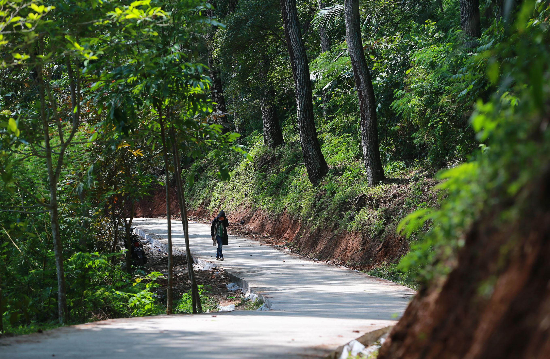 Libur Panjang ke Bandung? Coba Mampir ke Djuanda Forest Park