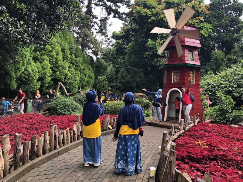 4 Potret Spot Instagrammable di Farm House Lembang Bandung