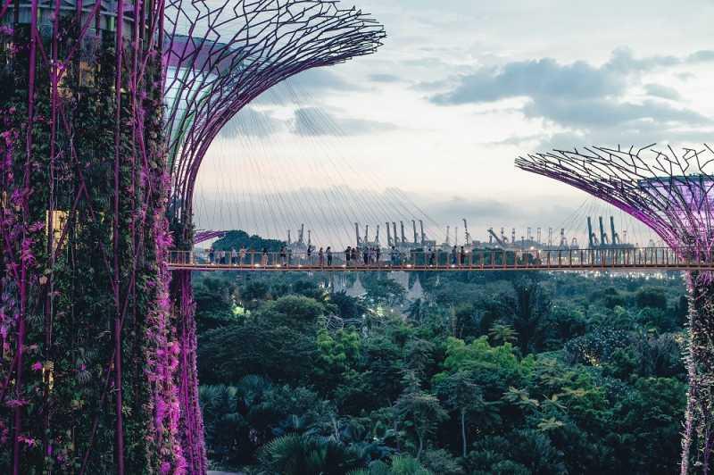 Singapura Bikin Taman Niat Banget, Nih 5 Rekomendasinya
