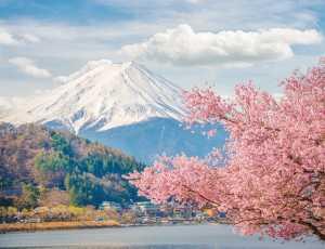 Jalan-jalan Murah ke Jepang Saat Musim Semi? Ini Caranya!