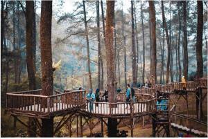 Menelusuri Keindahan Hutan Pinus di <i>Orchid Forest Cikole</i> Bandung