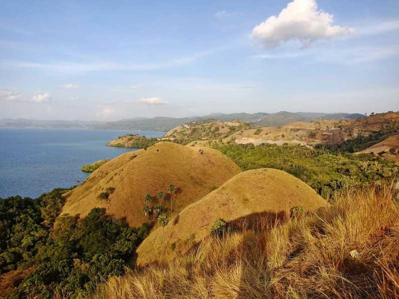 Pulau Komodo Ditutup, Ini Alternatif Wisata di Labuan Bajo