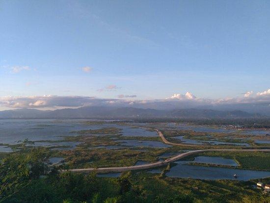 Ke Danau Limboto Gorontalo Burung dari Berbagai Belahan Dunia Bermigrasi