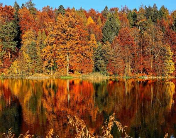 5 Tempat Terbaik di Dunia untuk Menikmati Musim Gugur