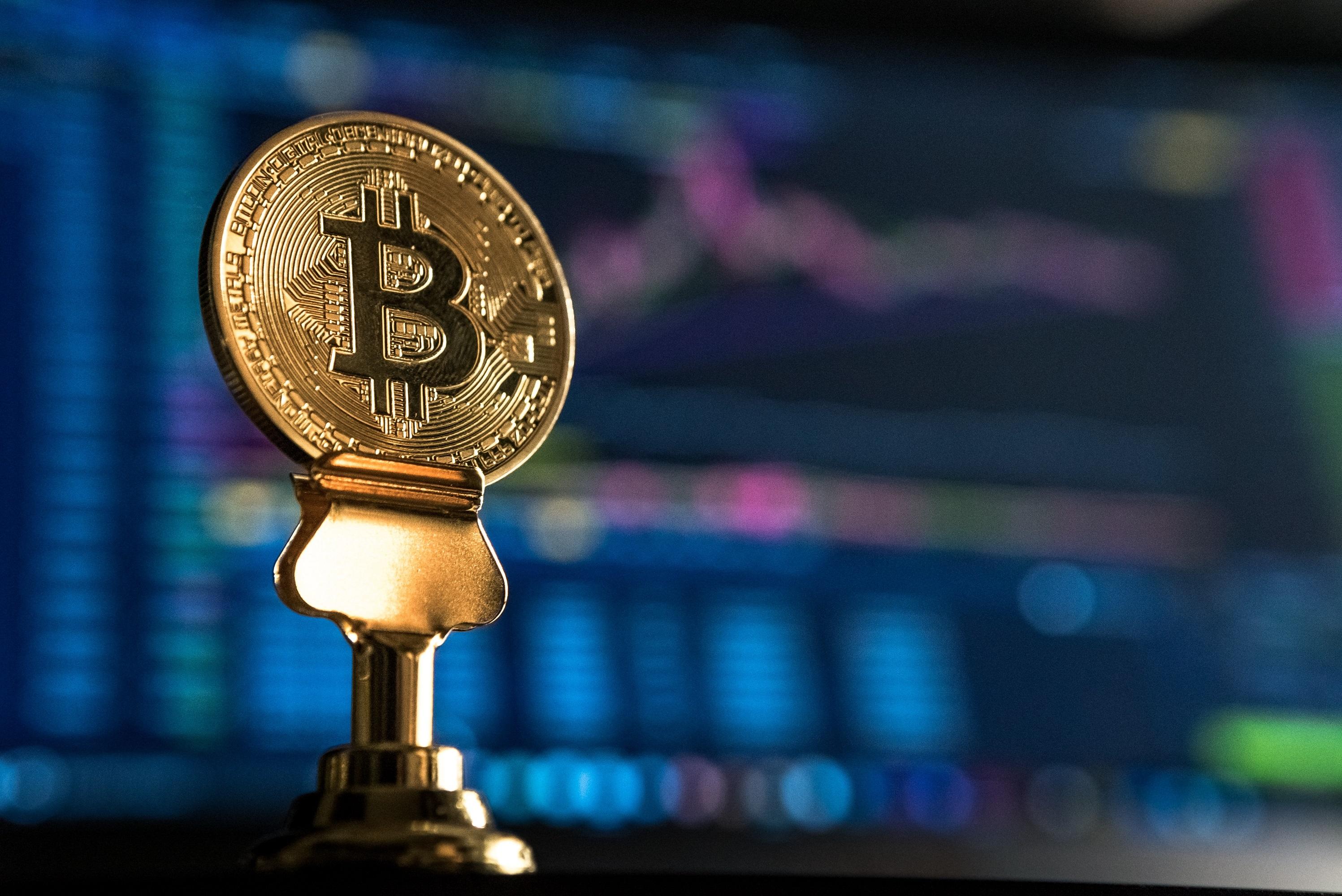 bitcoin bot trading dal vivo)