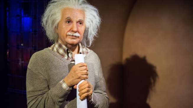 Rambut Perempuan Ini Mirip Albert Einstein