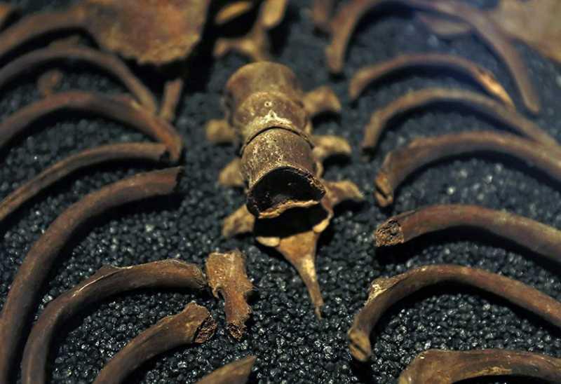 Kuburan Vampir Ditemukan di Polandia
