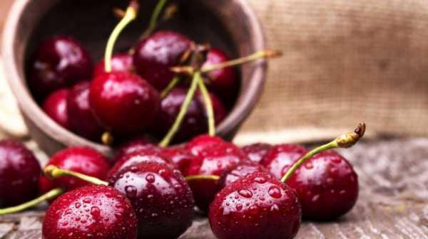 5 Makanan Sehat Ini Ternyata Mengandung Racun