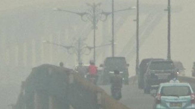Kabut Asap Riau, Satgas Kebakaran Hutan dan Lahan Dibentuk