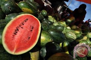 Kulit semangka sebagai gel antijerawat