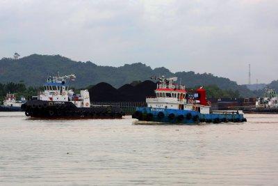 Menteri Agraria: Ibu Kota Negara Diputuskan Pindah ke Kalimantan Timur