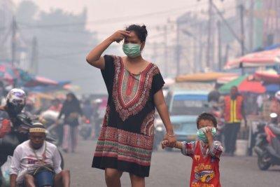 Jokowi Tetapkan Siaga Darurat di Riau Akibat Kebakaran Hutan Meluas