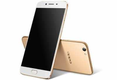 Ini Ponsel Android Terlaris di Kuartal 1, Bukan Samsung & Xiaomi