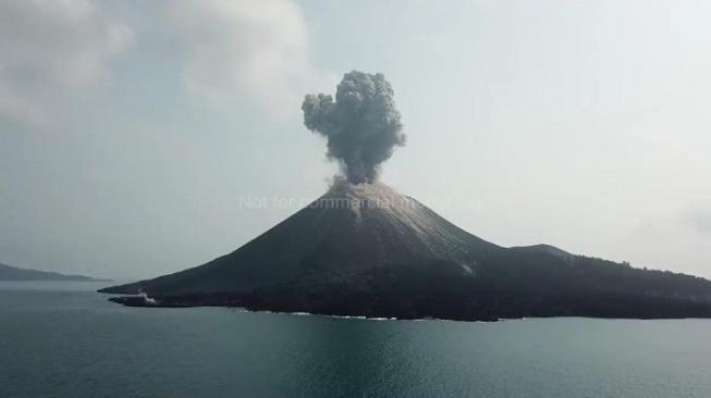 Gunung Anak Krakatau Erupsi, Sehari Meletus 576 Kali