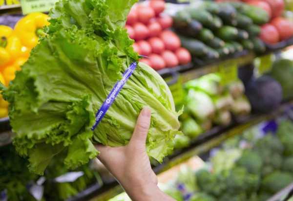 Tampak Lebih Muda dengan Rajin Konsumsi Sayuran Hijau