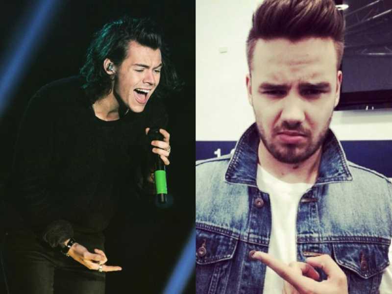Liam Payne Tidak Menyukai Musik Harry Styles