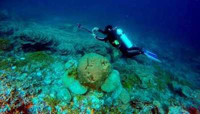 Cerita Pengibar Bendera Merah Putih di Dasar Laut Wakatobi
