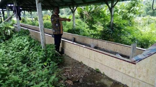 Makam Kuno Berukuran Raksasa Ditemukan di Sumatera Barat