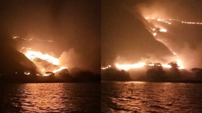 Kesaksian Turis dan Oknum Tour Mengenai Kebakaran Gili Lawa