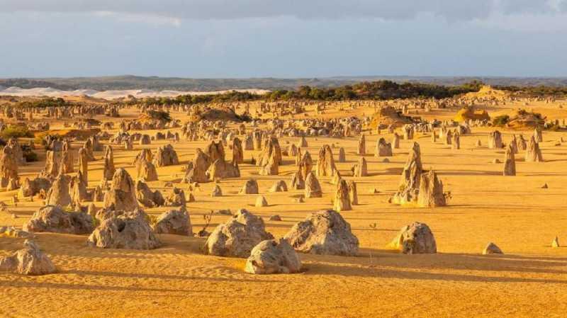 Pinnacles, Gurun Pasir Berbatu Lancip di Australia Barat