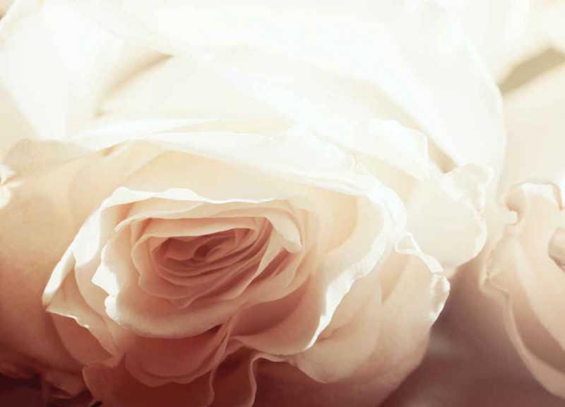Mitos Seputar Hari Valentine