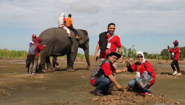 Wisata ke Padang Sugihan, Naik Gajah dan Bersantap Sate