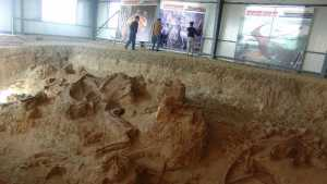 Menggali Surga Dinosaurus di Afrika Selatan