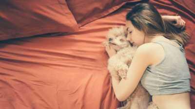 Berbahayakah Tidur dengan Hewan Peliharaan?