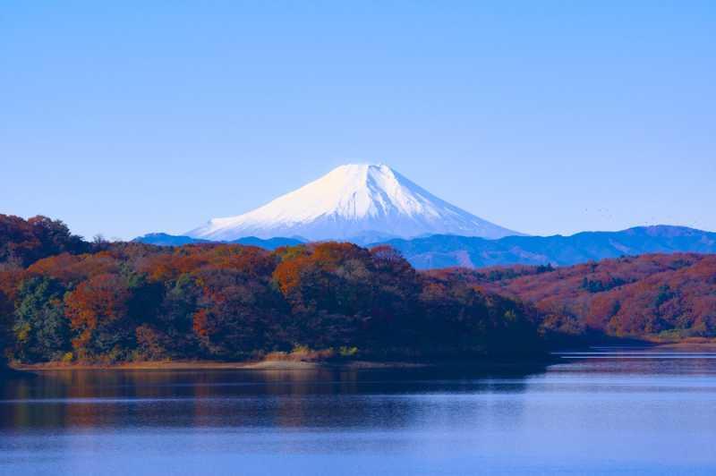 7 Travel Vlog Ke Jepang Yang Wajib Ditonton