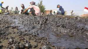 Tujuh Pulau di Kepulauan Seribu Ikut Tercemar Tumpahan Minyak Pertamina