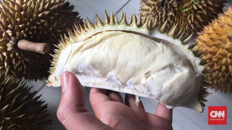 Durian Bikin Gedung Kampus di Australia Harus Dievakuasi
