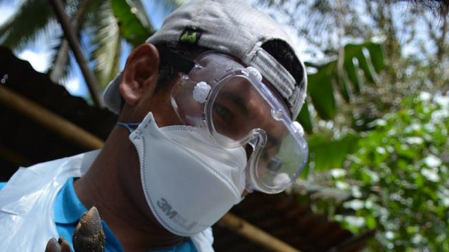 Cegah Wabah Flu Babi Afrika, Ini Respons Pemerintah