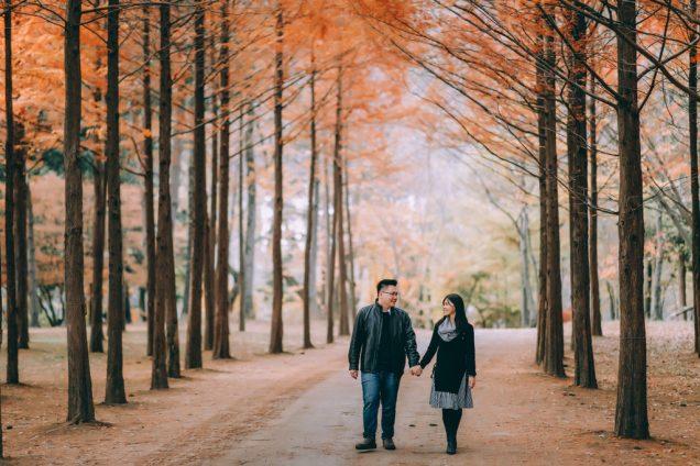 Seromantis Drama Korea, Panduan Liburan Autumn Bareng Pacar ke Nami Island