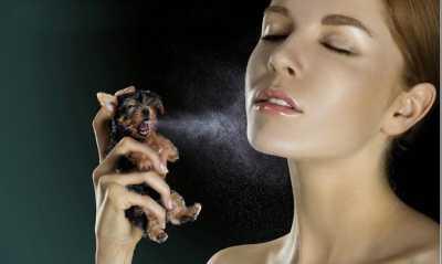 5 Cara Bikin Aroma Parfum Tahan Lama