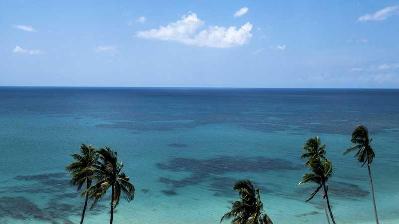 Lautan di Bumi Memanas dengan Sangat Cepat, Bahaya Besar untuk Manusia