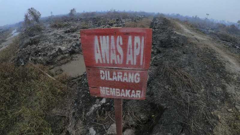 BNPB: Fenomena Langit Merah Jambi Disebabkan Hamburan Mie