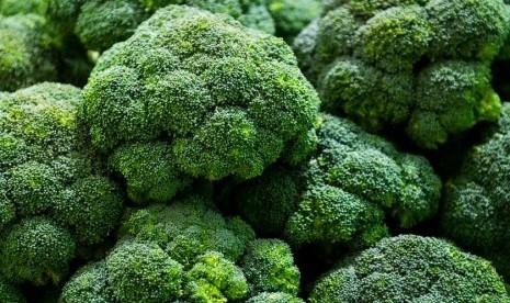 Cara Terbaik Olah Brokoli Agar Dapat Nutrisi Maksimal