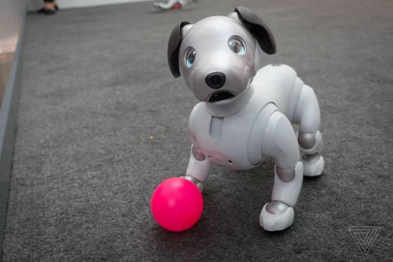 """Sony Ciptakan Robot Anjing """"Aibo"""" dengan Teknologi AI"""