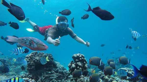 Menengok Pulau Rubiah, Akuarium Raksasa dari Sabang