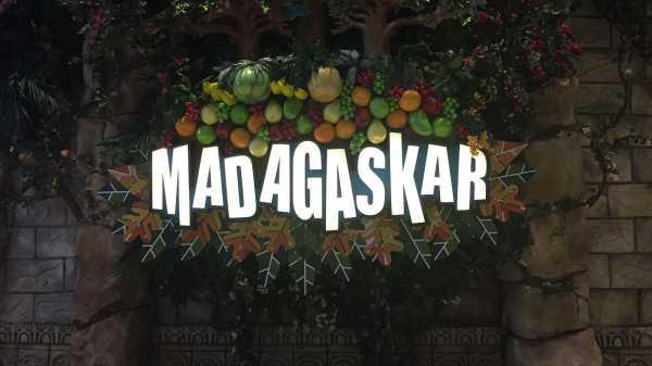 Rasain Nih Guys, Sensasi Makan di Hutan Belantara Madagaskar Jakarta
