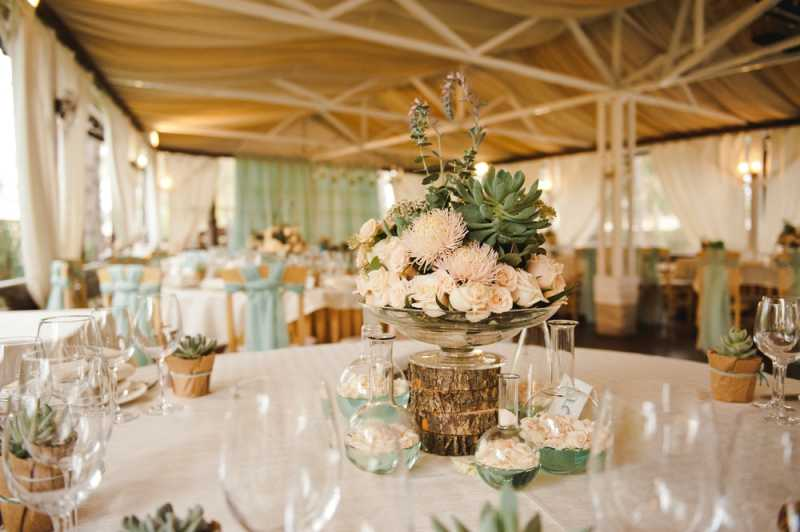 Inspirasi Tanaman Hias untuk Pesta Pernikahan
