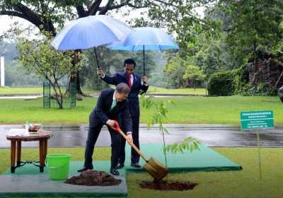 Payungi Presiden Korea Selatan Moon Jae In, Begini Cerita Jokowi
