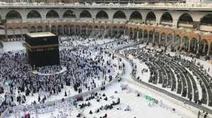Invasi Berakhir, Masjidil Haram Bersih dari Jangkrik dan Belalang