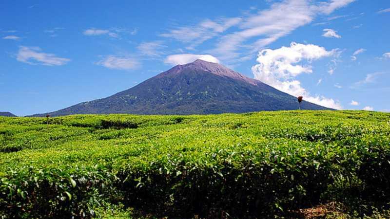 Mahasiswa Tolak Pergantian Nama Gunung Kerinci Jadi Joko Widodo