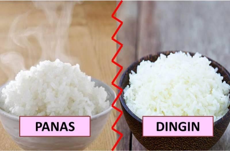 Nasi Panas vs Nasi Dingin, Lebih Sehat yang Mana Kira-kira? Cari Tahu di Sini!