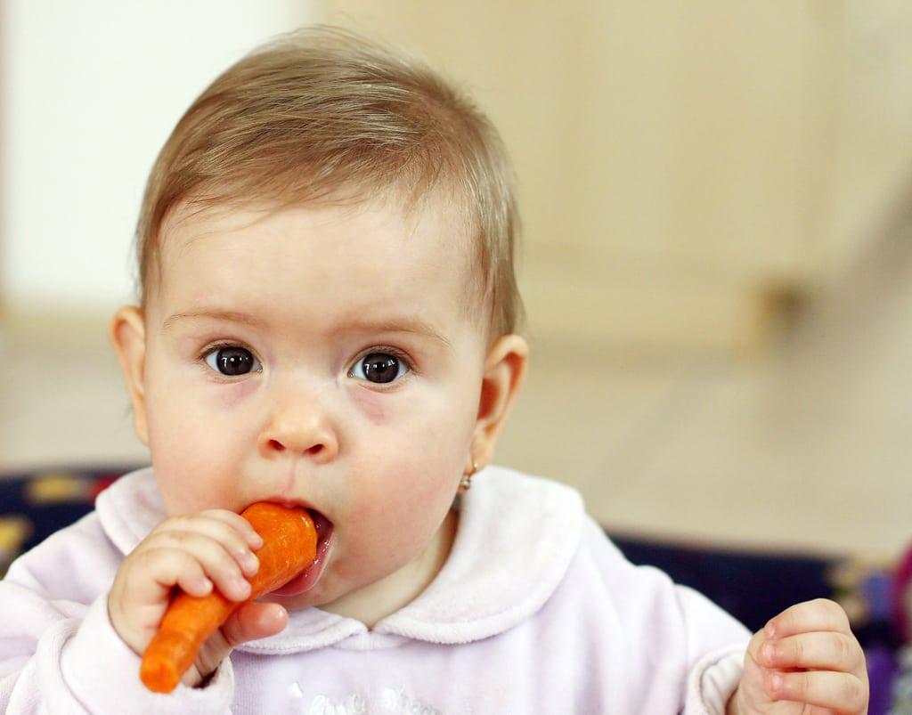 7 Pilihan MPASI Terbaik untuk Baby Led Weaning